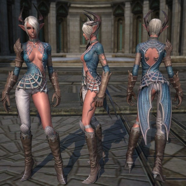 TERA vs. Guild Wars 2 sexy skins / armor / clothes